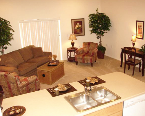 Example of Customized Living Room
